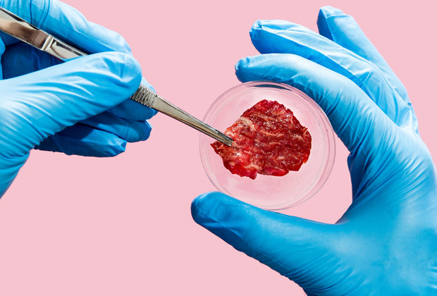 Is Lab-Grown Meat Vegetarian? A Philosophical Debate.