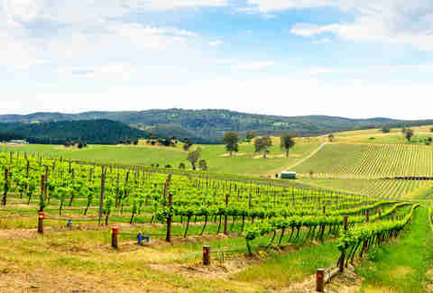 Barossa, South Australia