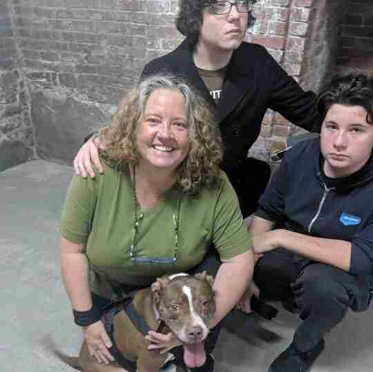 peaches yonkers dog adopted