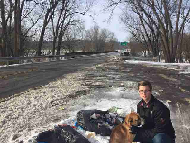 Stray dog with rescuer on side of road