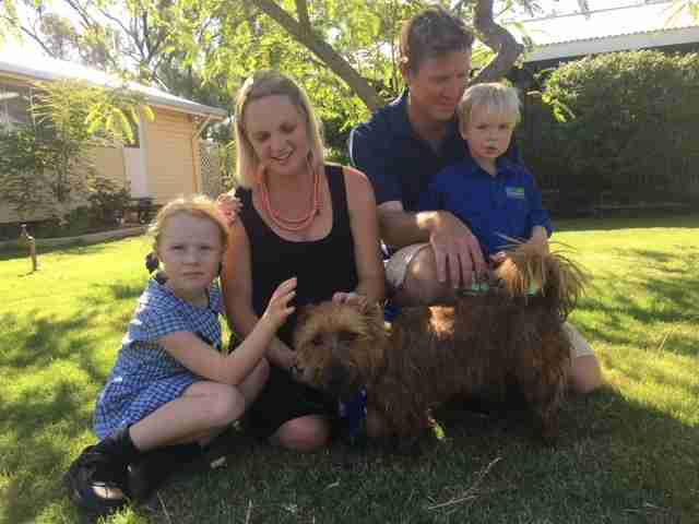 Rusty the Australian terrier home with the Scudamores