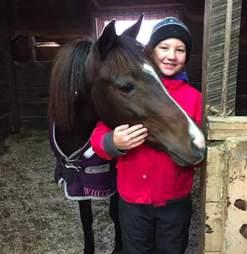 rescue pony ontario
