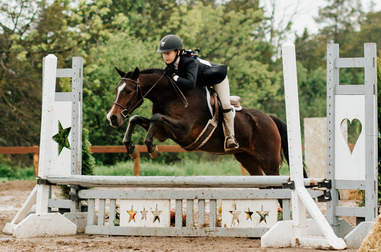 rescue pony competing jump show ontario