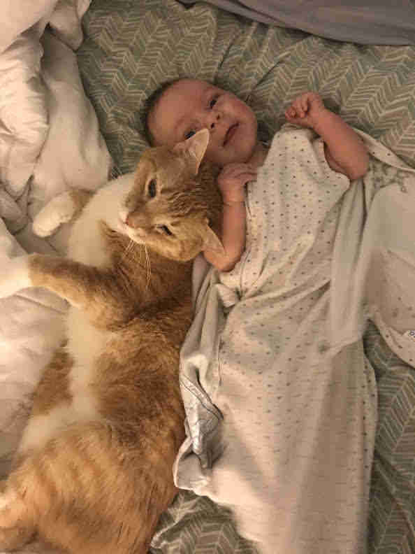 Cat cuddling with baby