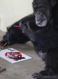 cheetah chimp art