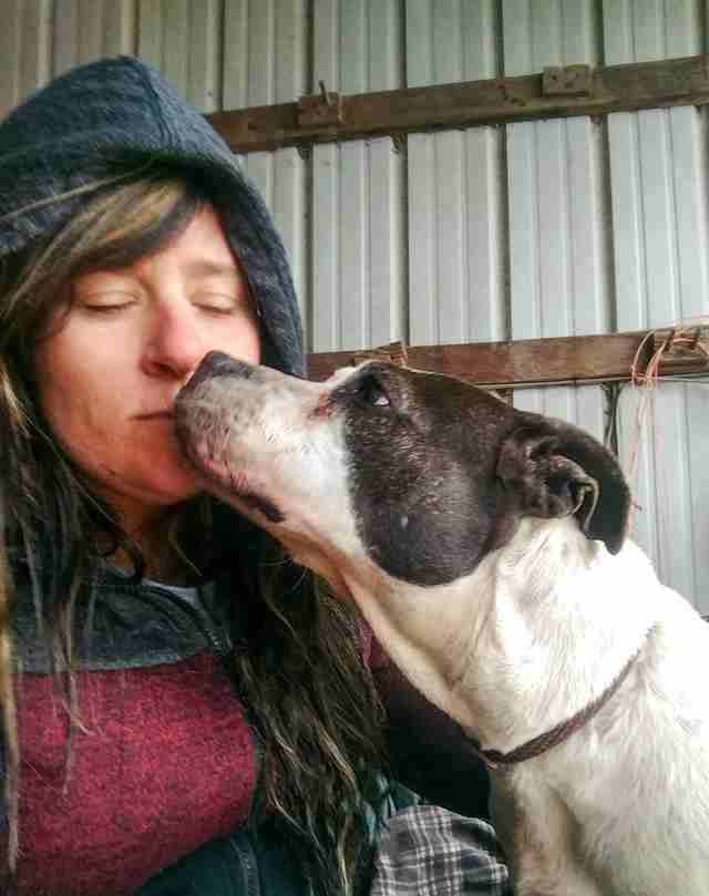 Dog saved from homelessness kissing rescuer