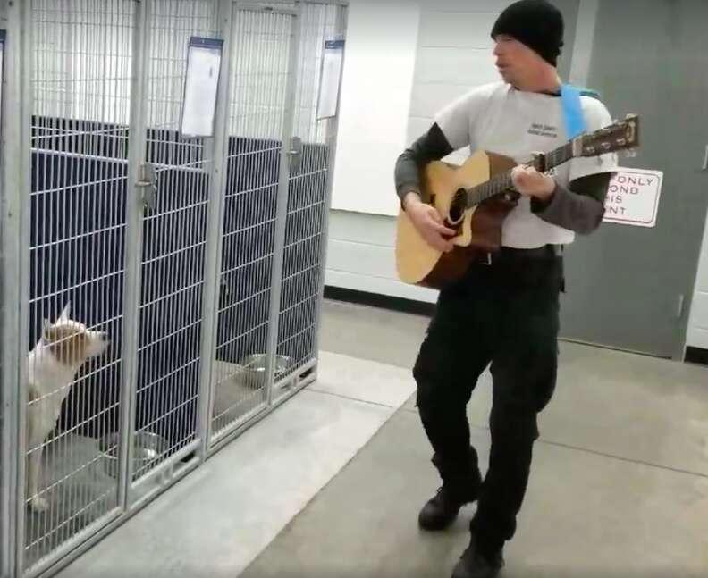 dog rescue sing north carolina