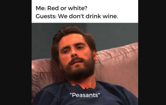 Hilarious Wine Memes to Celebrate National Drink Wine Day