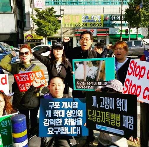 south korea dog meat protest olympics