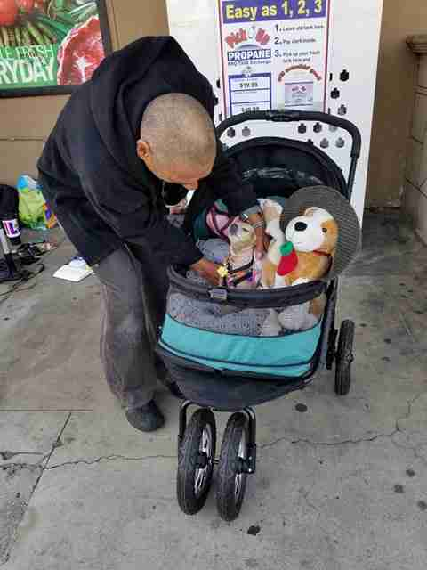 Man tucking dog into dog stroller