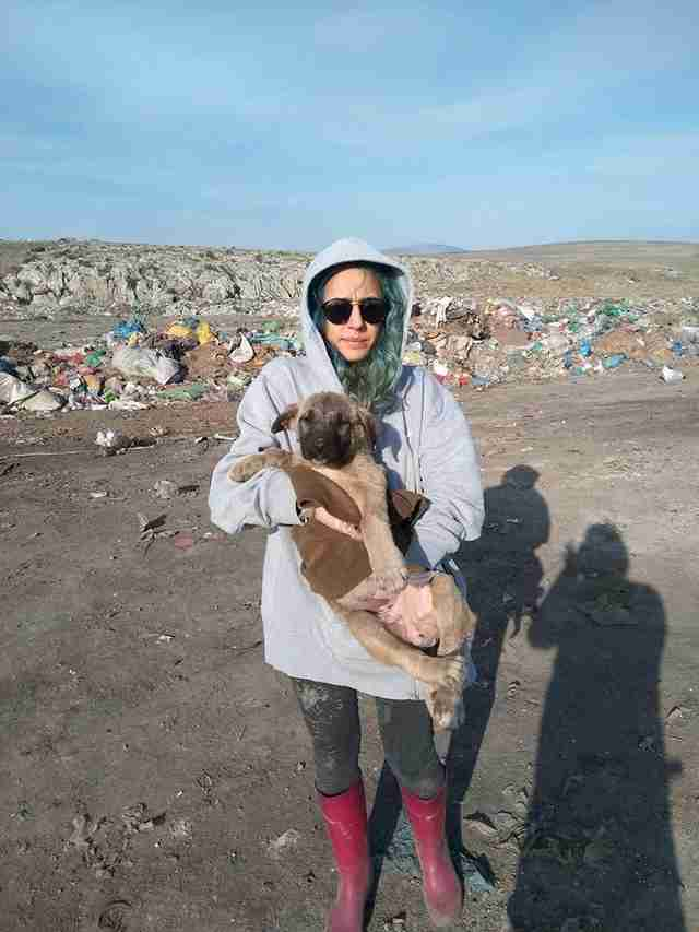 Woman holding homeless dog at landfill