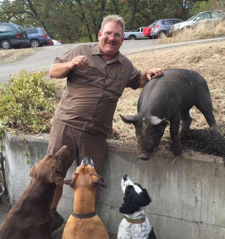 pig dogs oregon UPS driver