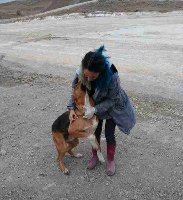 Woman hugging stray dog