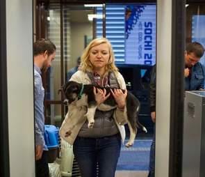 rescue sochi olympic dog russia