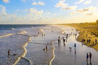 Lively Folly Beach