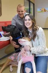 dog rescue proposal pitbull