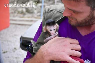 Man holding rescued baby macaque