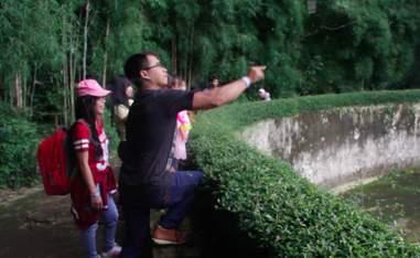 Zoo visitor flicking cigarette into orangutan enclosure
