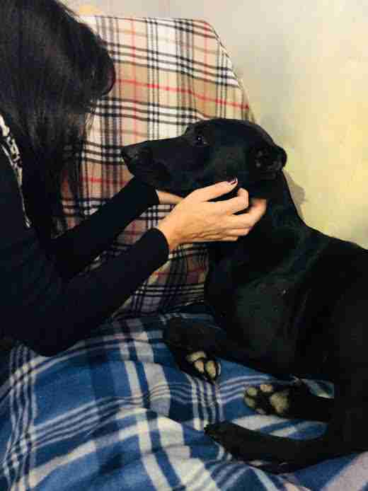 Woman hugging black dog
