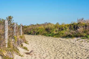 Sandy Hook shore