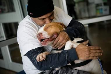 Man hugging pit bull dog