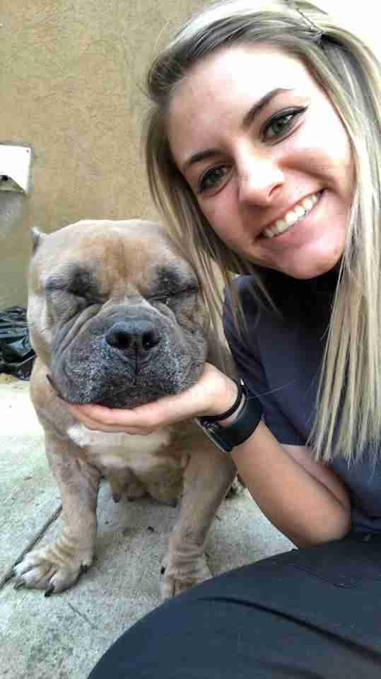 Woman with rescued American bulldog