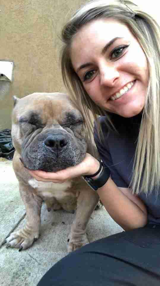 Mujer con bulldog estadounidense rescatado