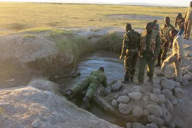 elephant calf rescue kenya