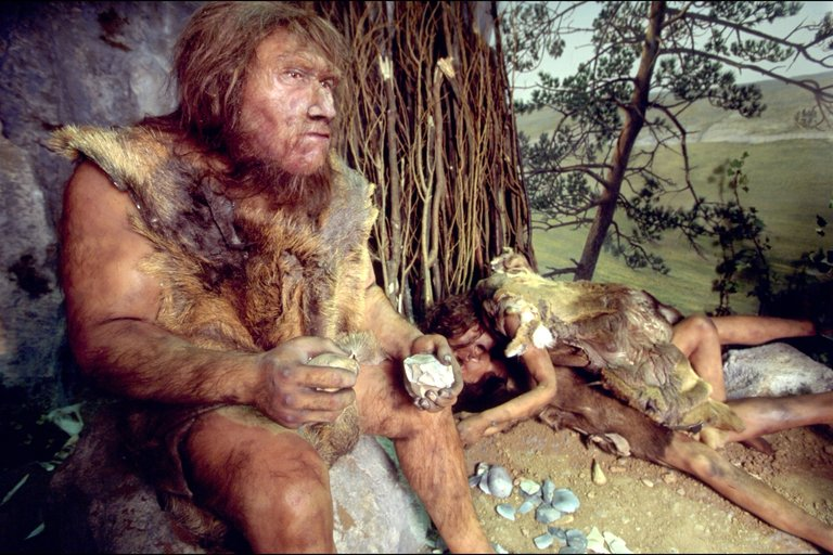 A New Batch of Neanderthal Genome Provides Insights Into Their Complex History