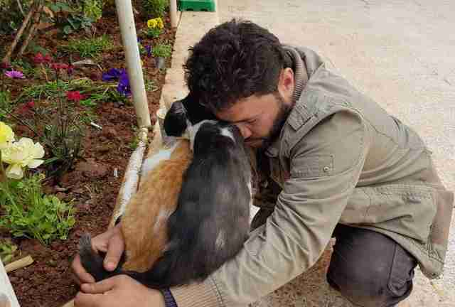 Man hugging cats at sanctuary