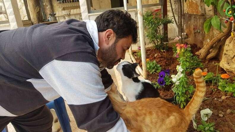 Man kissing cats