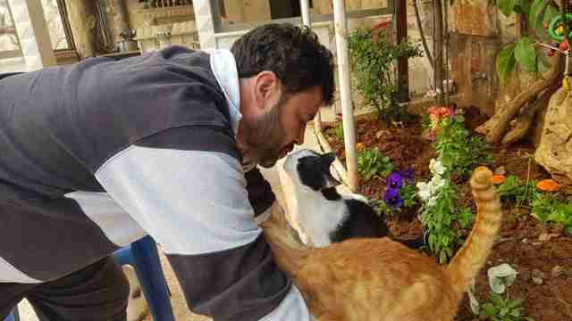 Man kissing cats