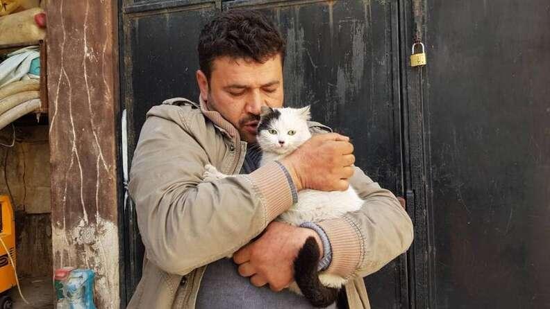 Man hugging cats