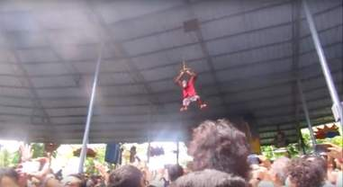 orangutan boxing match thailand