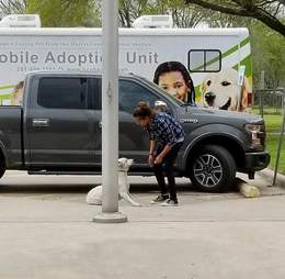 Woman trying to drag dog into animal shelter
