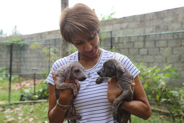 Woman holding rescued dogs in her arms