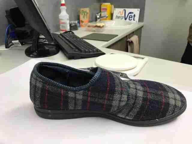 Slipper sitting on desk