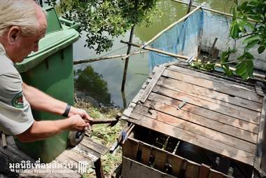 Rescuer pulling monkey out of cage