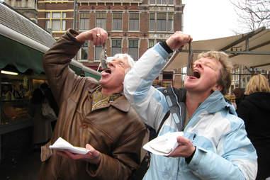 herring in Delft, Netherlands