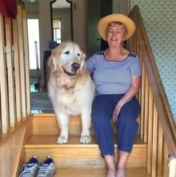 dog visits neighbor every day