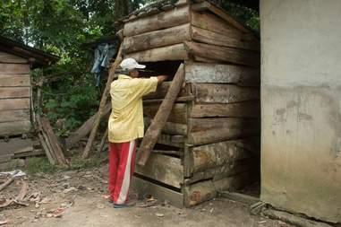 Man looking at orangutan inside box