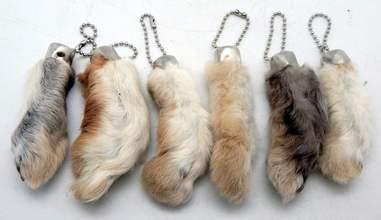 rabbit feet amazon cruelty