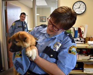 comfort dog police fuzz