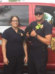 rescue puppies texas