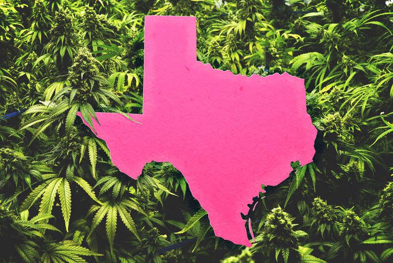 texas weed