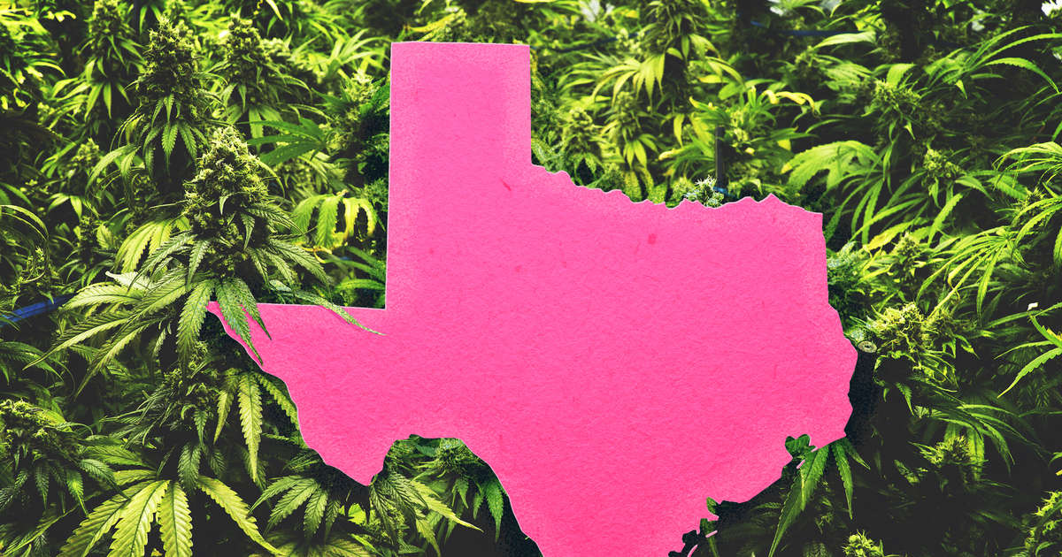 How to Get Medical Marijuana in Texas: Where to Buy Legal Weed