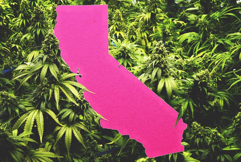 legal weed california