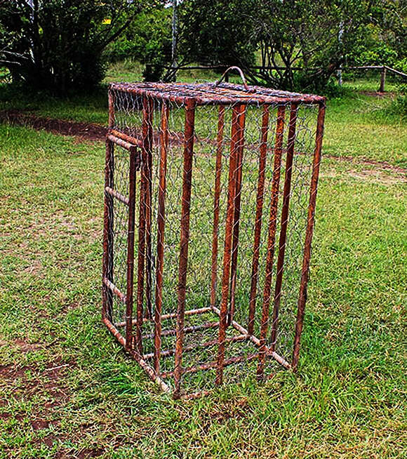 Rusted metal cage