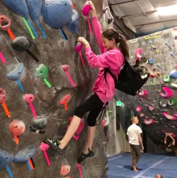 rock climbing cat