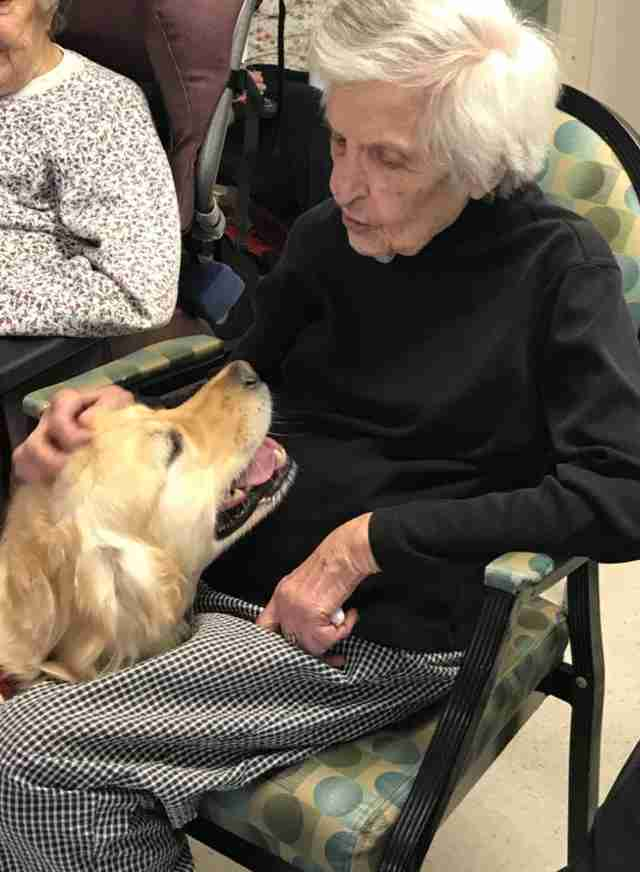 therapy dog nursing home party